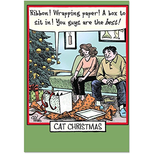 Christmas Humor Images.Box Set Of 12 Box Of Cat Christmas Humor Christmas Greeting Cards With Envelopes
