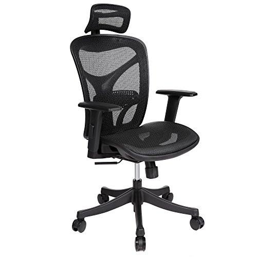 snagshout creine high back ergonomic mesh office chair swivel